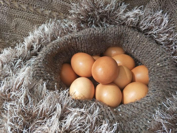 eggs in knitting nest Warm Clothing Nature Brown Color Sunlight And Shadow Daylight Knitting Food Ingredient Meal Breakfast In Studio Still Life Nature Color EyeEm Selects Egg Carton Easter Full Frame Backgrounds Egg Raw Food Close-up Food And Drink Nest Egg Nest