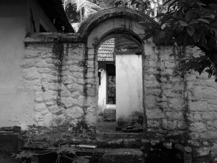 Architecture Built Structure Door No People Tree Creeper Plant Outdoors Plant Jungle Old House Arch Gateway Entry Way Passage Enter Stairs Stone Tropical Location Time Weathered And Worn Test Of Time in Trivandrum Tiruvanthapuram Kerala