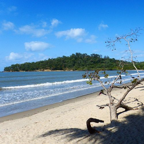 These are best beaches. The ones that are hidden and tucked away from us KewarraBeach Lifesabeach  Seeaustralia Australia ThisIsQueensland Queensland Travelling RTW ChasingTheWorld LifeOnTheMove Beach