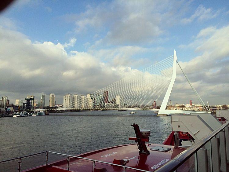 Erasmusbrug Rotterdam Rotterdam NorwegianGetaway Erasmusbrug Erasmus Bridge Maas Ncl Norwegiancruiseline Cruise Ship Cruiselikeanorwegian NLRTM Instawalk010 Gersmagazine Holland Nederland Igersholland Igersrotterdam
