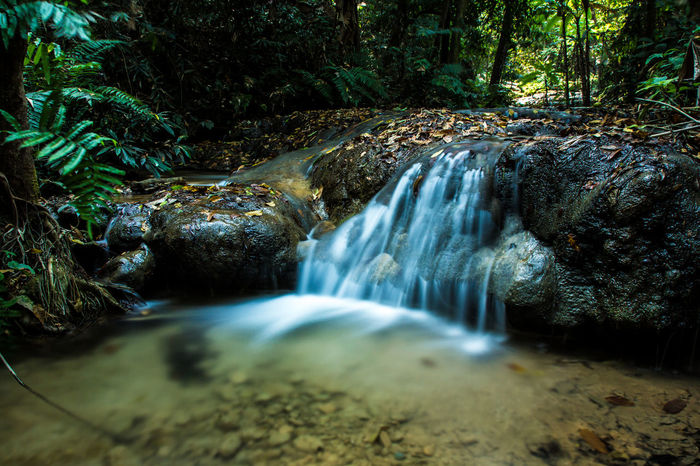 Chiang Rai, Thailand Beauty In Nature Blurred Motion Chiangrai Day Flowing Water Forest Freshness Long Exposure Motion Nature No People Outdoors Pu Kang Waterfall Rapid River Running Water Scenics Tree Water Waterfall