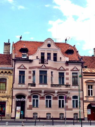 Pinkhouse Transilvanya Funnyhouse Brasov