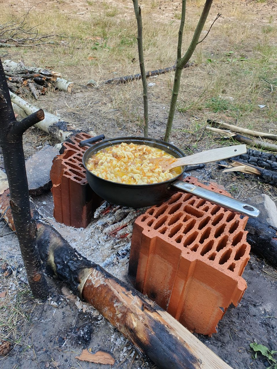 food, food and drink, day, high angle view, kitchen utensil, nature, container, no people, tree, preparing food, wood - material, freshness, heat - temperature, preparation, household equipment, metal, outdoors, burning, plant, log, camping stove