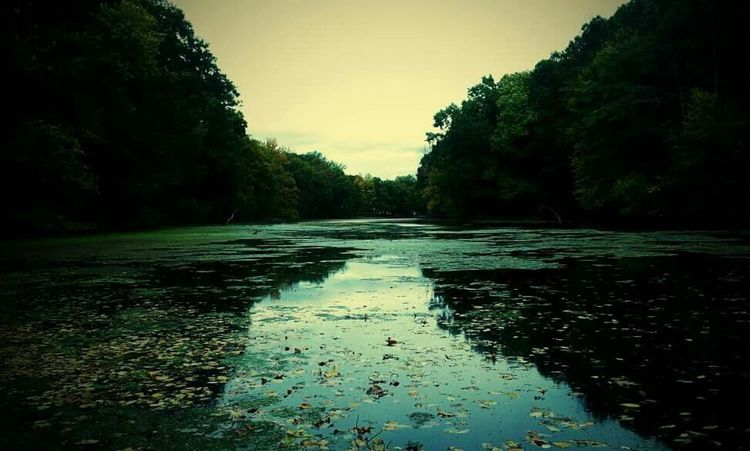 Lake View Serenity Serene Outdoors Still Water New Jersey Parks New Jersey Watchung Reservation Lake Suprise The Secret Spaces The Great Outdoors - 2017 EyeEm Awards