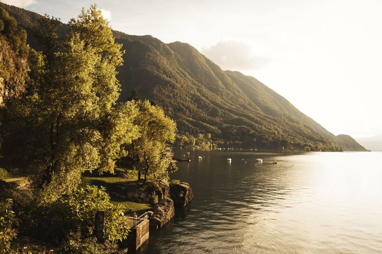 View Of Lake Maggiore By Trees And Mountain Against Sky