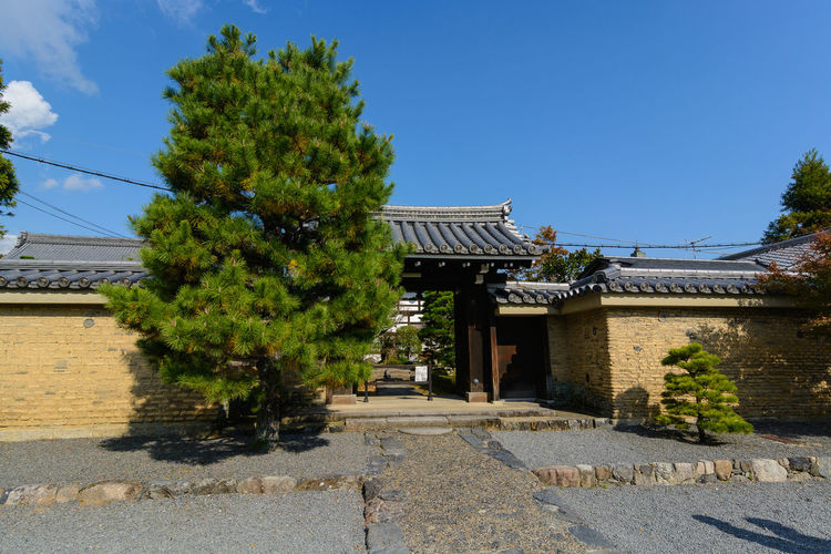 Entrance Temple Entrance Architecture Building Exterior Built Structure Day Nature No People Outdoors Plant Sky Tree