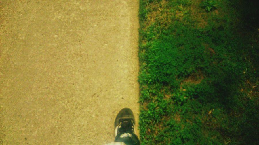 Walking Around Walking