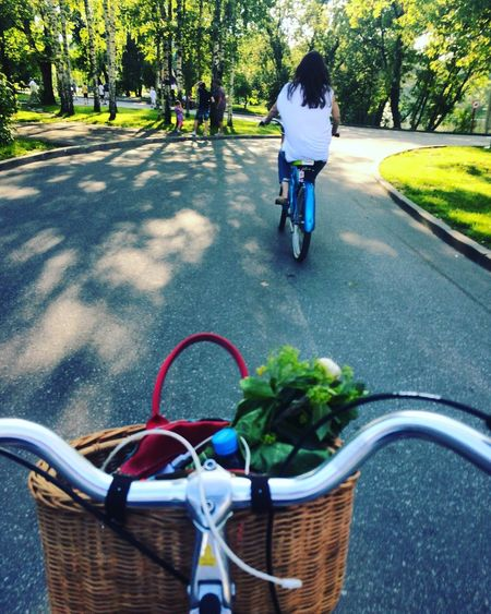 на колесах Bicycle Land Vehicle Activity Road Ride Bicycle Basket Outdoors Tree Day Cycling