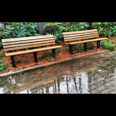 Park Rainy Good Instamoods Bestoftoday Cool Chairs Love Nature Cityscenes Scenes Amazing Winter