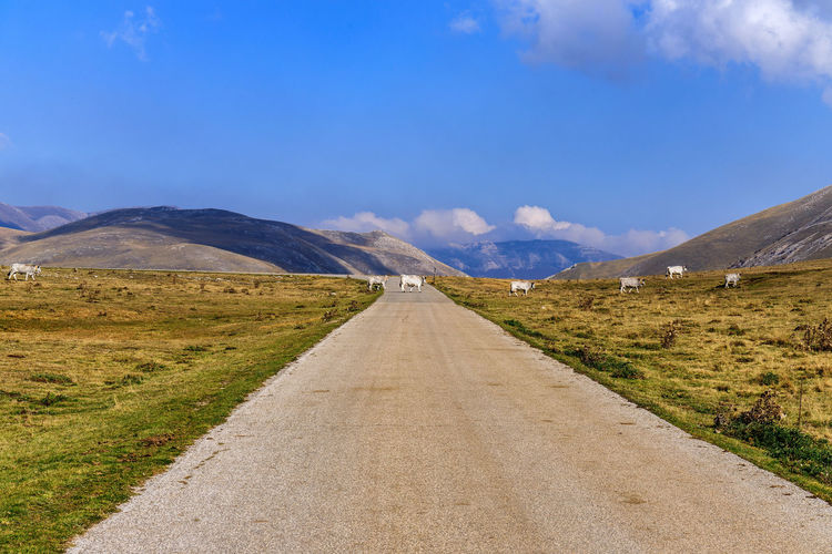 Campo Imperatore Road Sky Direction The Way Forward Mountain Transportation Landscape Environment Diminishing Perspective Scenics - Nature Tranquil Scene Tranquility Beauty In Nature Non-urban Scene Nature Mountain Range Cloud - Sky vanishing point Day Land No People Outdoors Long Nature Photography Nature_collection