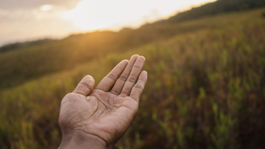 Close-up of hand holding leaf against sky during sunset