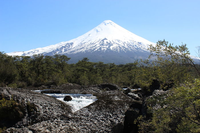 Beauty In Nature Blue Chile Clear Sky Cold Temperature Day Landscape Mountain Mountain Peak Nature No People Osorno Chile Outdoors Petrohué Scenics Sky Snow Snowcapped Mountain Travel Destinations Tree Volcan Osorno Volcano Volcanoes