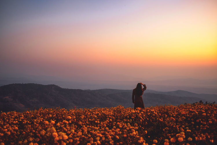 Rear view of woman standing amidst field against sky during sunset