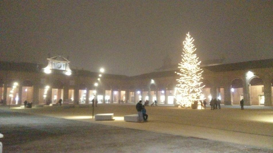 My Winter Favorites Romagna Albero Di Natale Best Christmas Lights Lugo Di Romagna