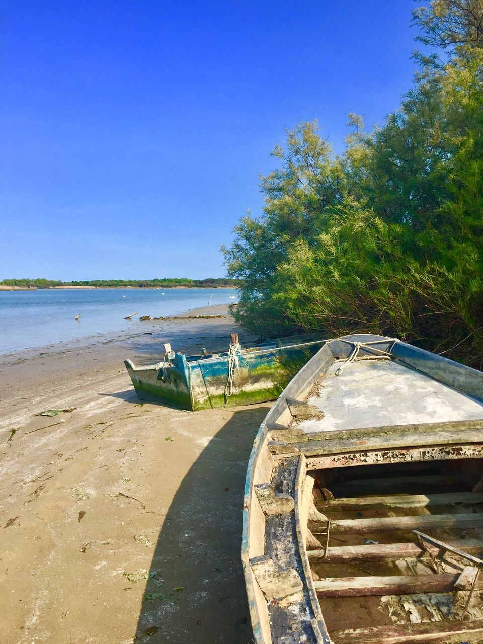 transportation, nautical vessel, water, mode of transport, nature, moored, day, boat, tranquility, tree, tranquil scene, no people, clear sky, beauty in nature, outdoors, scenics, beach, sea, sky, outrigger