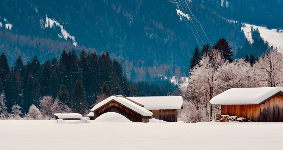 Panoramic View Of Snow Covered Landscape And Trees Against Sky