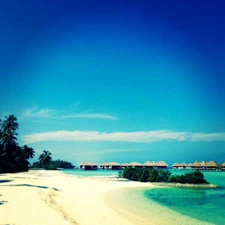 Nature Awesome Weather snorkelling Tannin blue water Sandy Beach