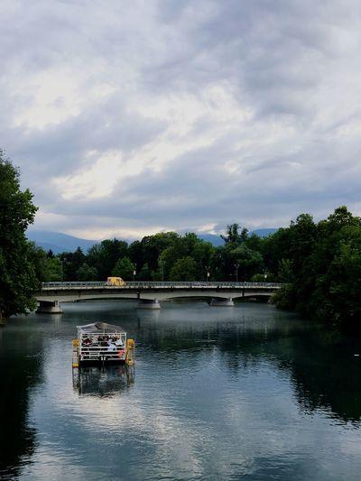 Rijeka Una Tree