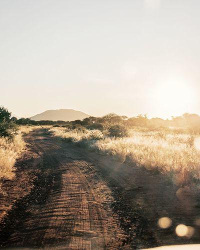 Namibian dirt