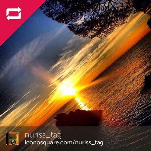 BONA NIT!! Avui anirè a dormir molt contenta que els amics de @nuriss_tag hagin escollit la meva imatge de l'albada per la seva fantàstica galeria seguiulos i etiqueteu Nuris_tag i la propera pot ser la vostra.