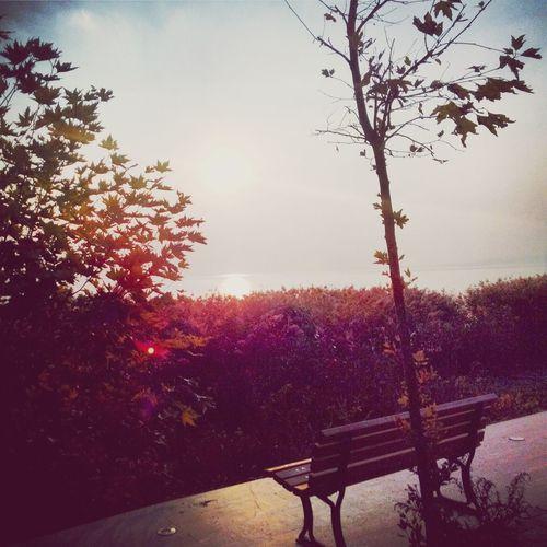 Landscape Lake Sunset Photography