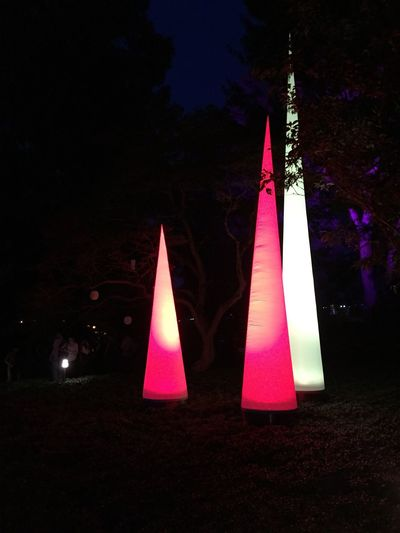 Lichterfest2015 Friendship Night Teelicht Farbenfroh Sommer Karlsruhe Outdoors Veranstaltung GoingOut Lovethisplace Colourful Darkness And Light Beautiful Germany Trees