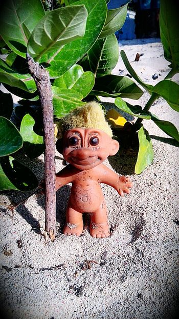 mr. trolly taking a stroll at the beach... 😊😆