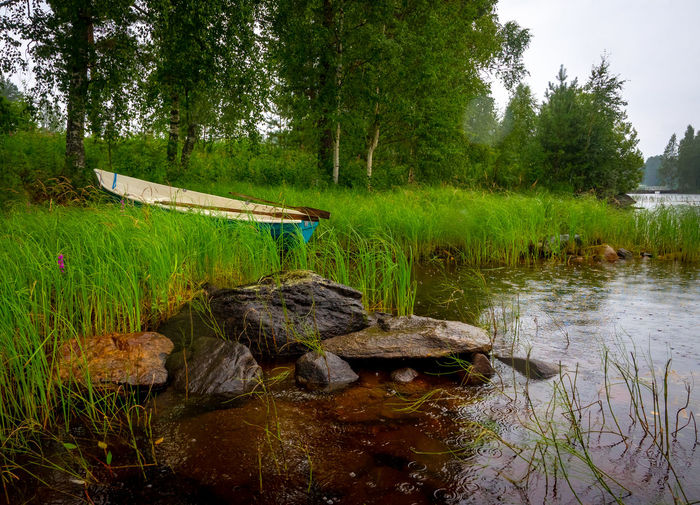 Beauty In Nature Boat Day Forest Lake Nature No People Non-urban Scene Outdoors Plant Tree Water