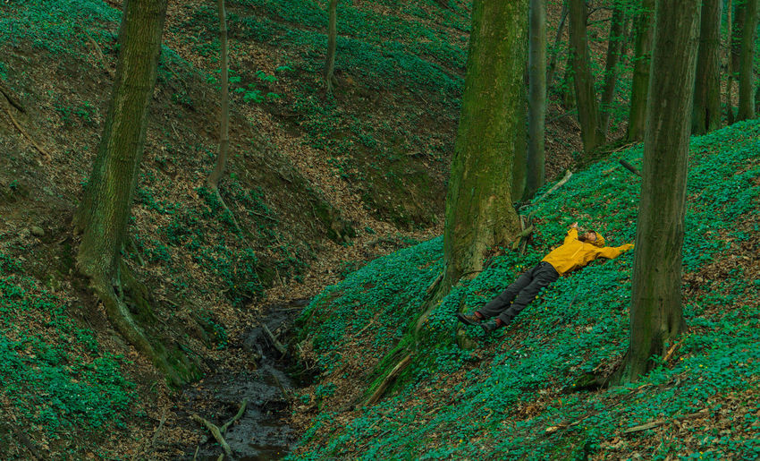 Man lying down on field at forest