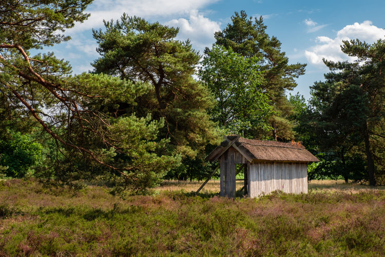 Heidelandschaft Lüneburger Heide Architecture Built Structure Cloud - Sky Cottage Day Environment Field Forest Grass Growth Heide House Land Landscape Lush Foliage Nature No People Outdoors Plant Sky Tranquility Tree