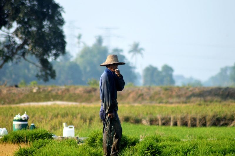 Side view of farmer standing on field