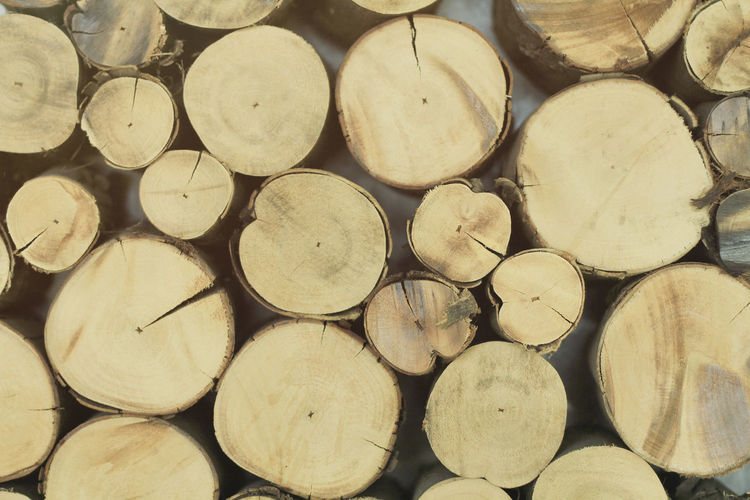 Stumps cut into circles. Abundance Arrangement Backgrounds Close-up Day Deforestation Environmental Issues Firewood Forestry Industry Fossil Fuel Fuel And Power Generation Full Frame Heap Large Group Of Objects Log Lumber Industry No People Outdoors Pile Stack Textured  Timber Wood - Material Woodpile