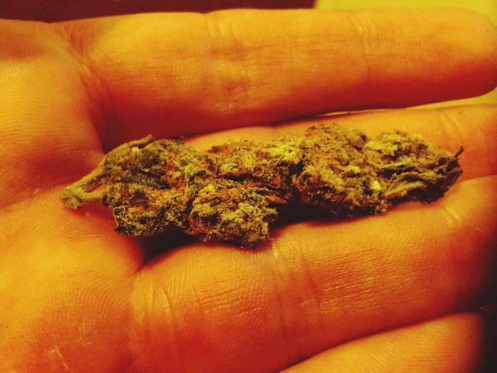 I love you Mary Jane Weed Marijuana Enjoying Life Relaxing