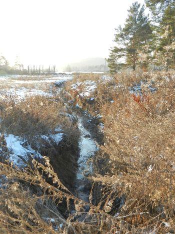 Russia, Miass Nature Not Frozen River