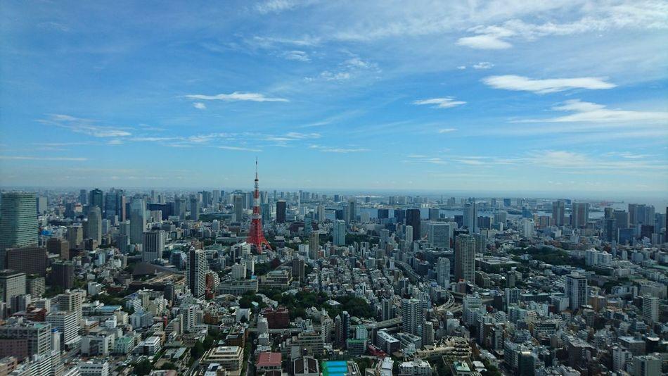 東京タワー Tokyo Tower Japan Tokyo City Skyscraper High Angle View Sky Day