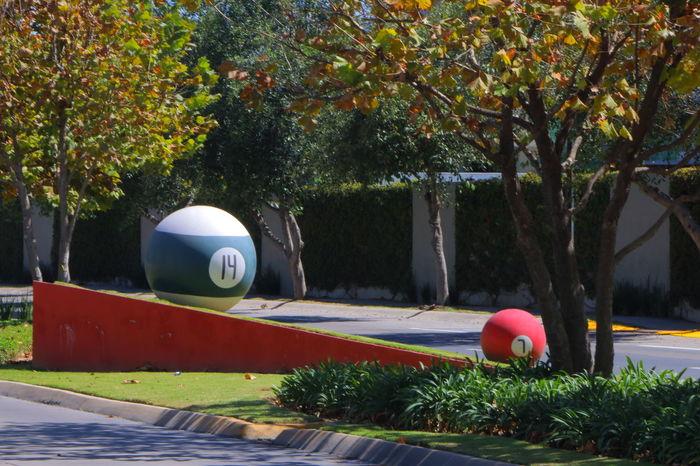 Composición aurea 14 7 Avenue Wall Median Strips Outdoors Pool Ball Pool Balls Tree