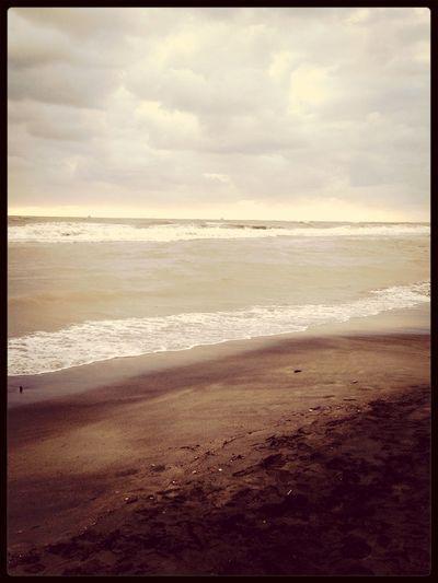 Sea Winter
