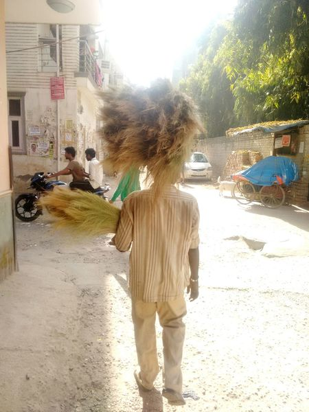 Those brooms on his head are very close to an awesome wig Up Close Street Photography a very hasty click. Street Vendor Brooms  Wig Salesman Business Businessman Broom Head Man Hardwork Real People Real Life Street Photography Eye For Photography Balance Sunshine Sunlight From My Point Of View Walking