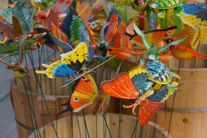 Animal Themes Bird Butterfly Colorful Multi Colored No People Toy Winged Creatures