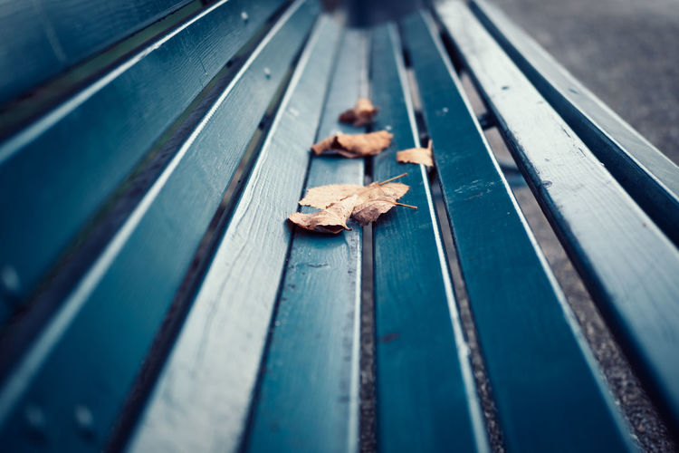 Empty park bench with autumn leafs Autumn Bench Blue Close-up Day Leaf Leafs No People Outdoors Parkbench Wood