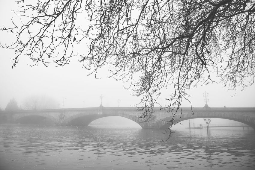Architecture Black And White Blackandwhite Bridge Bridge - Man Made Structure Connection Day Fog Foggy Foggy Day Foggy Landscape Kew Bridge London No People Outdoors River Street Light Thames Thames River Urban Landscape Water Popular Photos