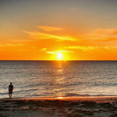 @methodcz is Walking on the Beach During next Epic australian sunset . I wanna see more sunsets! 💓☺💜🌊😍😍🏄😀🌞🌞 sea ocean sky sun clouds traveling travelgram mirror warrenjc amazing happy fun friends theglobewanderer perthcity
