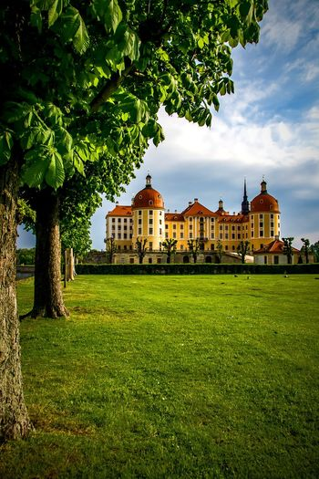spring at the castle Moritzburg Historic View Walk Pictureoftheday Photooftheday Germany Deutschland Spring Castle Castle View  EyeEm Best Shots EyeEm Nature Lover EyeEm Selects EyeEm Gallery Moritzburg  Schloss Schloss Moritzburg Saxony Sachsen Springtime Historic Building Historical Building Politics And Government Tree Cityscape City Architecture Building Exterior Grass Built Structure