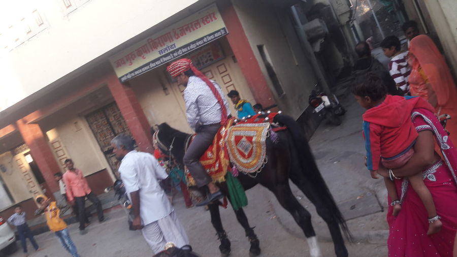Adapted To The City Horse Man Bridegroom Walking Men Real People Large Group Of People People Outdoors Day Mare Village Horse Man Black Brown Back Side No Face Decorated Animal Decorated Horse Man Sitting On Animal Decorated Mare Man On Mare Bridegroom On Horse