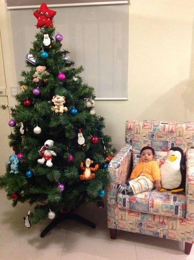 Listo para mi 1a Navidad !!!! Con mi familia