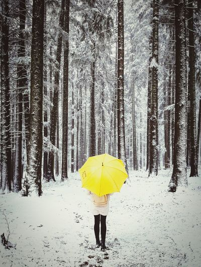 Rear view of woman with umbrella standing on snow covered land