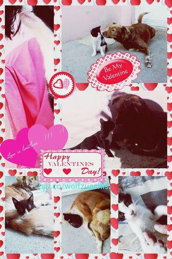 Colaj Eyeem Market Wolfzuachis Collage @wolfzuachis Bemyvalentine Valentineday Loveislimitless