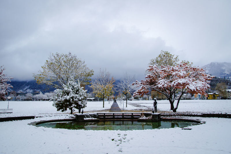 Beauty In Nature Cloudy Fountain Park Pond Sky Tree Winter