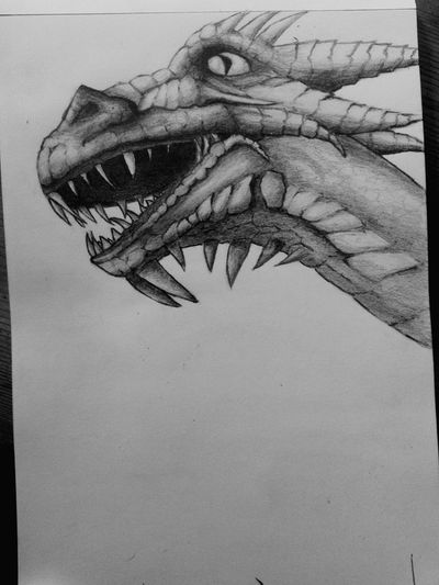 Couple hrs more shading and Pencil Drawing Sketching Dragon Beginner Artist Drawing Doodle Art