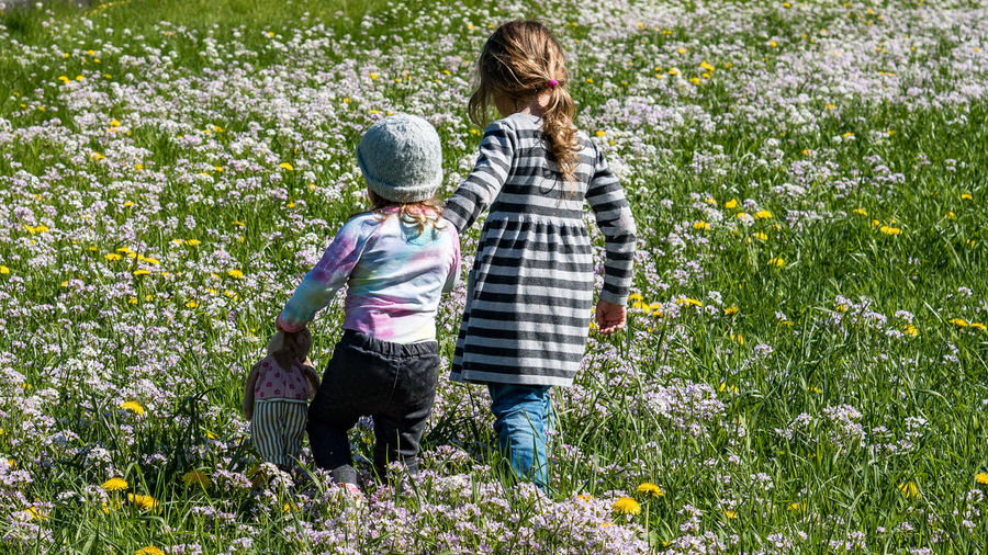 Sisterly love Happiness Holding Hands IKEA Innocence Love OM-D E-M10 Mark II Child Childhood Family Females Flower Growth Leisure Activity Nature Nature_collection Outdoors Plant Positive Emotion Togetherness Two People